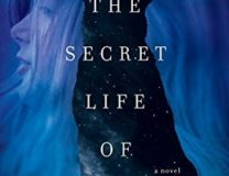 Secret Life of Souls by Jack Ketchum & Lucky McKee